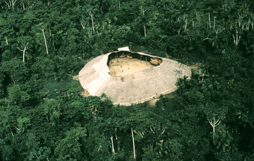 Running against Time: COVID-19 in the Central Amazon